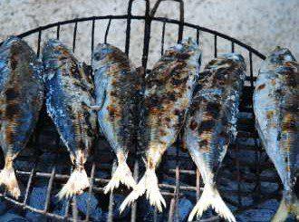 Рибено масло съхранява зрението