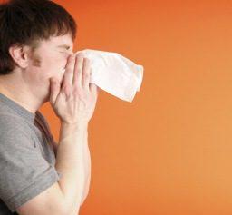 Диети и хомеопатия облекчават сенната хрема