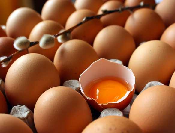 яйца диета