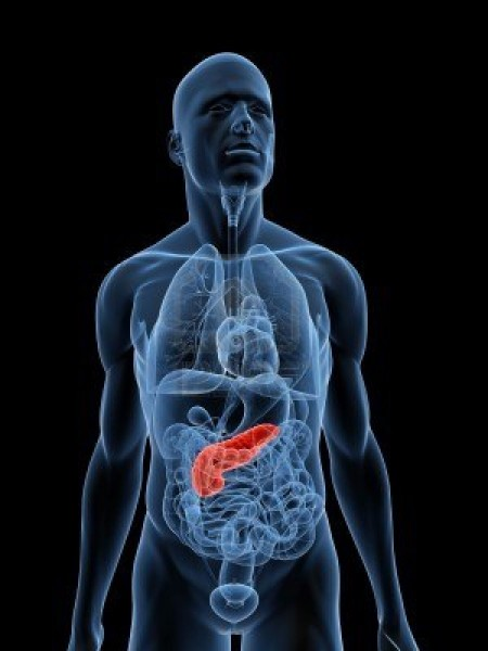панкреатит рак на панкреаса