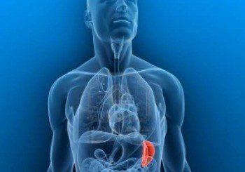 Уголеменият далак е заради болести на кръвта или инфекция