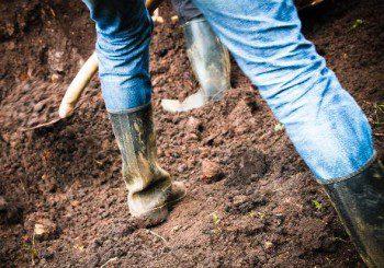 Почвата става източник на нови антибиотици