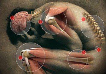 Човешкият мозък има уникални способности, може да лекува