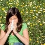 упорита хрема алергия