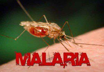 Ваксината за малария се очаква до края на годината