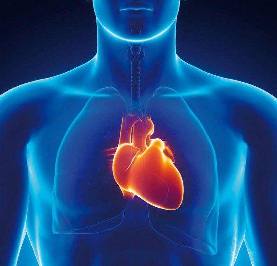 болести на сърцето миокардит