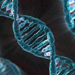 ДНК генетични дефекти