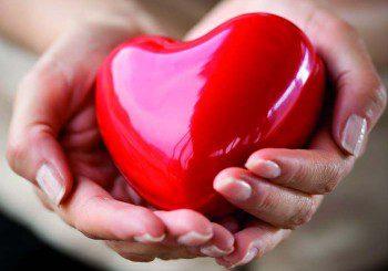 Дружеството на кардиолозите ви кани на празника на сърцето в неделя