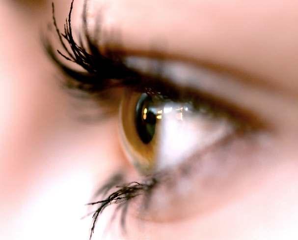 окото