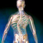 сколиоза гръбначно изкривяване