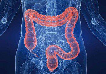 Хеликобактер пилори вероятно влияе и за рака на дебелото черво