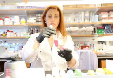 стволови клетки лаборатория
