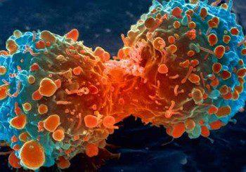 Витамин С може да се окаже лекарство от рак