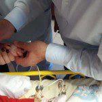 веноскоп бебета антибиотици