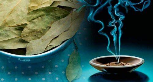 дафинов лист ползи