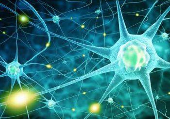 Лечение на паркинсон с експериментален препарат дава нови надежди