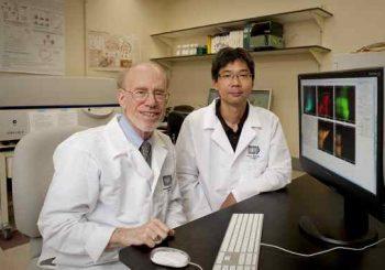 Нова ваксина тествана успешно при няколко вида рак