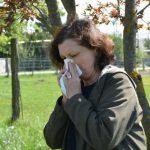 сенна хрема поленова алергия