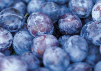 Диетолог посочи три плода, които трябва да ядем през есента