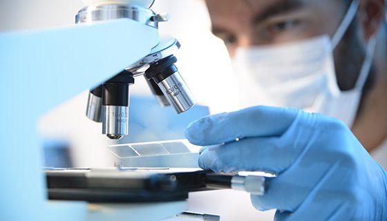 изследване на тъкани под микроскоп