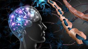 множествена склероза лечение и лекарства